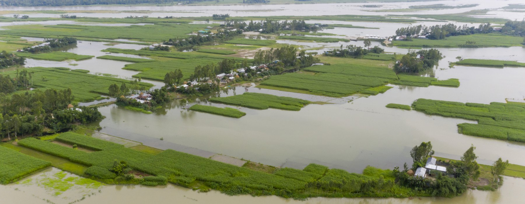 Flooded fields in Bangladesh