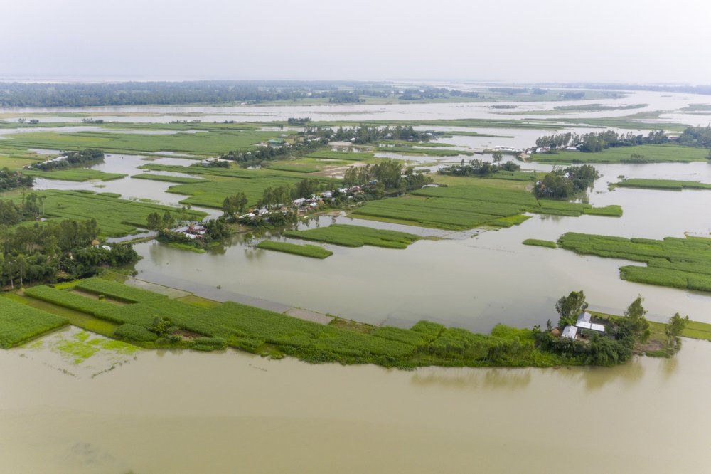 Flooded fields in Bangladesh