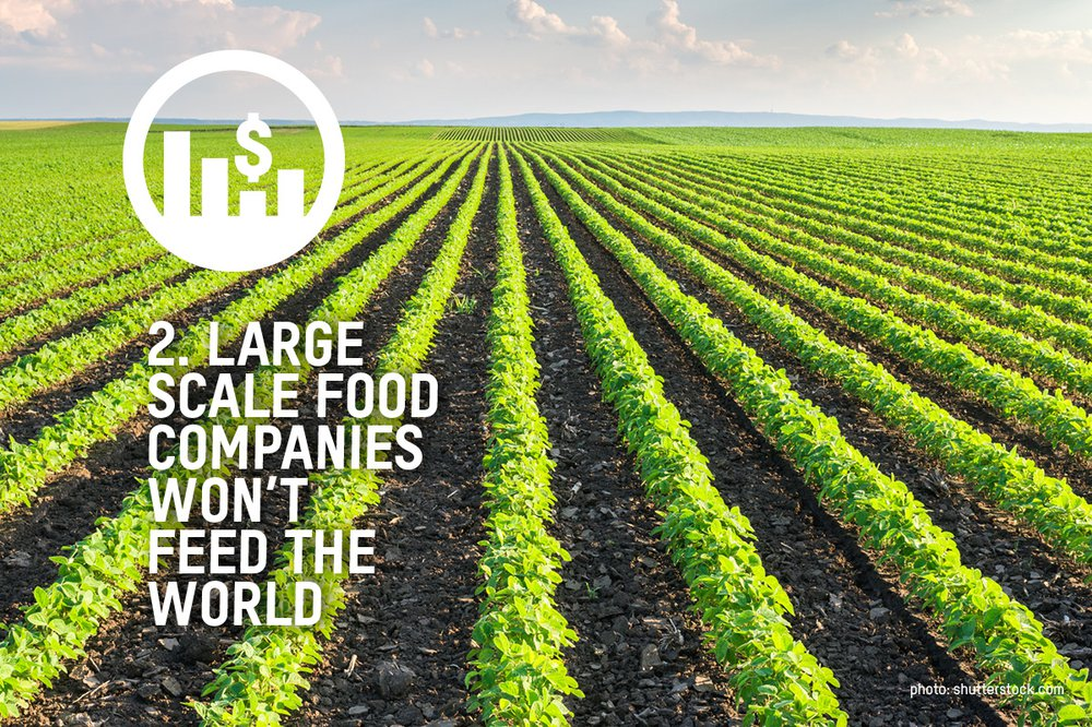 An image of a field of green crops with the words large scale food companies won't feed the world over the image