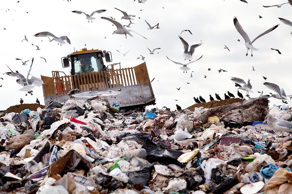 A forklift truck drives through a pile of rubbish at a landfill site. Seagulls fill the sky.