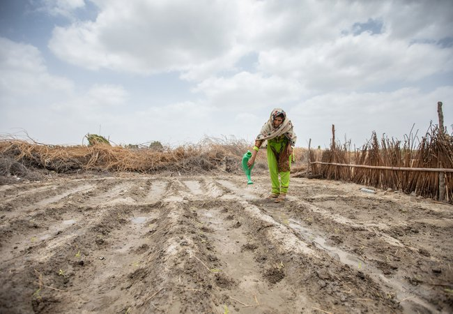 A farmer waters crops in Pakistan. Oxfam has worked with partners in Pakistan to provide training to help people adapt to the impacts of climate change.