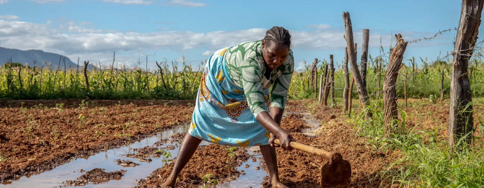 Sarah has been farming for more than 25 years. Photo: Cynthia Matonhodze/Oxfam